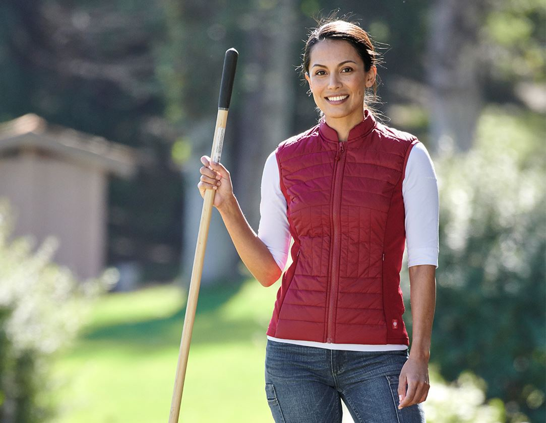 Work Body Warmer: e.s. Function quilted bodywarmer thermo stretch,l. + ruby