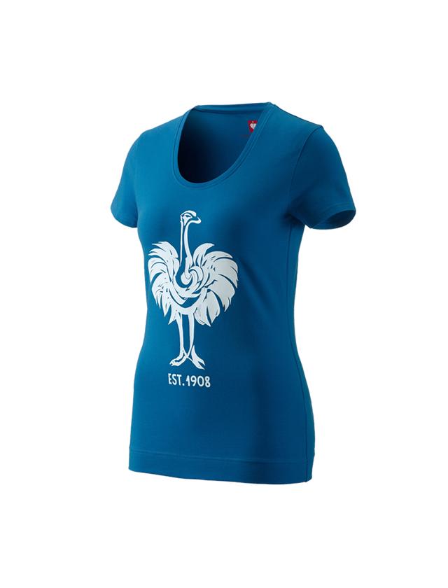 Överdelar: e.s. T-shirt 1908, dam + atoll/vit