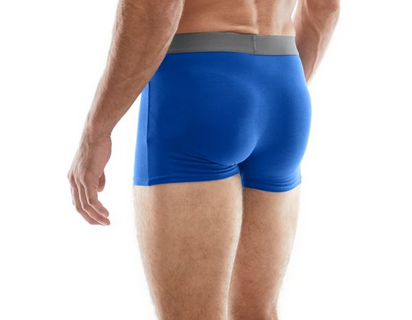 Underwear | Functional Underwear: e.s. Cotton stretch pants + royal 1