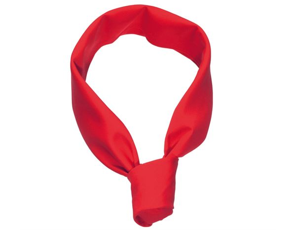 Catering Accessories: Matching Chefs Neckerchiefs + red